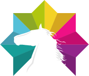 negative space horse head in colorful eight sided star