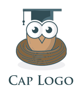 owl bird wearing education hat with nest logo