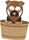 puppy in wooden bucket