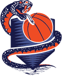 viper mascot with basketball